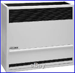 Williams 3003822 30,000 BTU Direct Vent Wall Furnace Heater Natural Gas In Stock